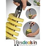 Multi Grid Stainless Steel Pineapple Peeler Pine Apple Slicer Kitchen Easy Gadget Slicer Cutter Fruit Peeler-1Pc