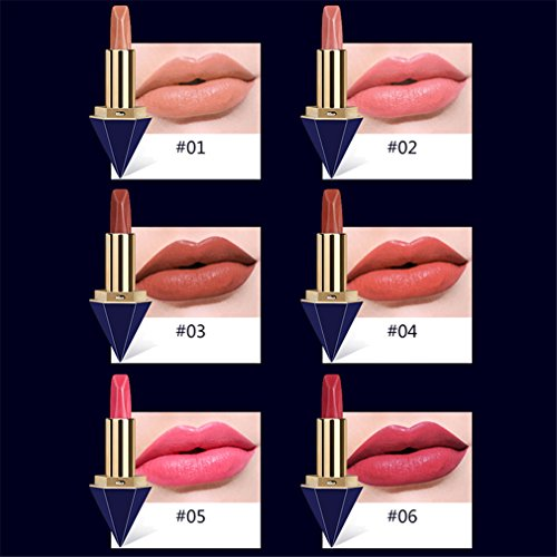 HENGSONG Lasting Matte Lipstick Makeup Lip Makeup Tool For Women Ladies (#02)