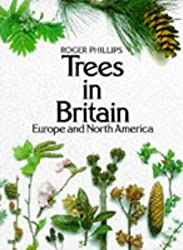 Trees in Britain, Europe and North America by Roger Phillips (1978-09-08)