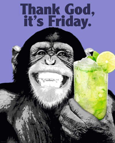 The Chimp - Friday Tier Plakatkunst Animal Mini Poster Plakat Druck - Grösse 40x50 cm