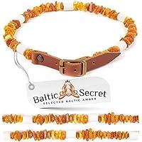 Baltic Secret - Collar de ámbar para Perro, con púas de cerámica EM - microorganismos efectivos - Collar de ámbar para Perros - ámbar - protección contra garrapatas