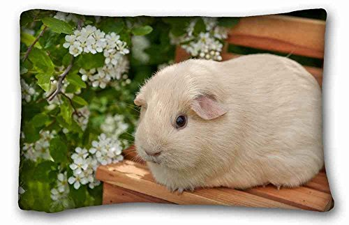 Lepilo Soft Pillow Case Cover (Animal Guinea Pig) Pillow Covers Bedding Accessories Size 20