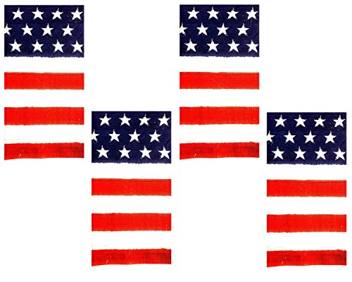 Juli Traditionelle Patriotische Rot Weiß und Blau Amerikanische Flagge Papiertischdecke-Set von 4 ()