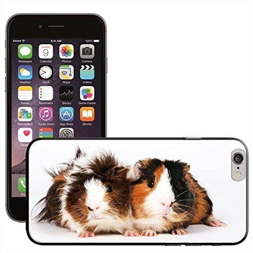 Rongeurs Coque arrière rigide détachable pour Apple iPhone modèles, plastique, Guinea Pigs, iPhone 6 Guinea Pigs