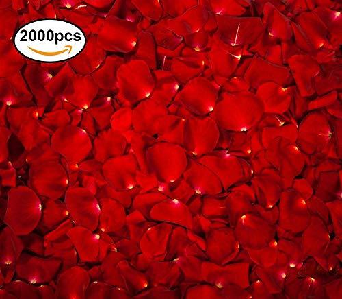 The Twiddlers 2000 Rote Rosen Seide Blütenblätter Kunstblumen - geruchloses, aromafreies - Rosenblaetter Perfekt für den Valentinstag Dekoration - Tisch deko Hochzeit sfeiern - Romantische Momente