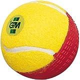 GM Swing King Tennis Cricket Ball (Red/Yellow)