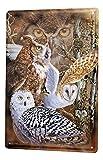 Blechschild Vogel Eulen Metall Deko Wand Schild 20X30 cm