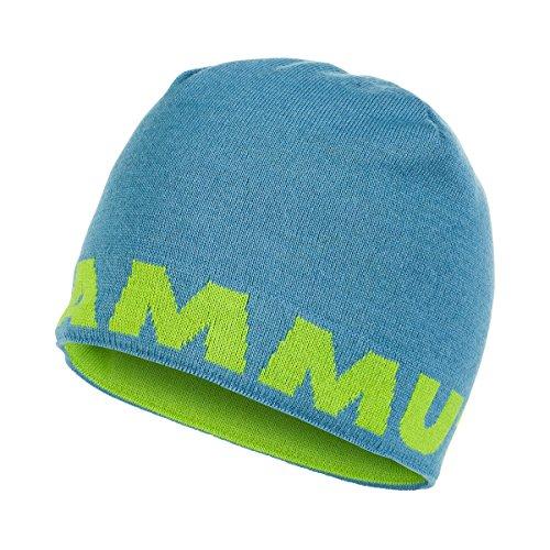 Mammut Logo, T-Shirt Herren Einheitsgröße Blu/Cloud/Sprout (Mammut Logo-shirt)