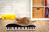 #9: Pets Empire Style Scratcher with Catnip Piano