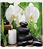 Abakuhaus Spa Duschvorhang, Orchideen Zen Steine Natur, Wasser Blickdicht inkl.12 Ringe Langhaltig Bakterie und Schimmel Resistent, 175 x 240 cm, Schwarz-weiß und grün