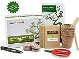 Kit albero bonsai, cresci il tuo albero bonsai a partire dal seme – Il set regalo include 5 varietà di alberi da piantare – Coltivazione al chiuso con istruzioni dettagliate in Italiano