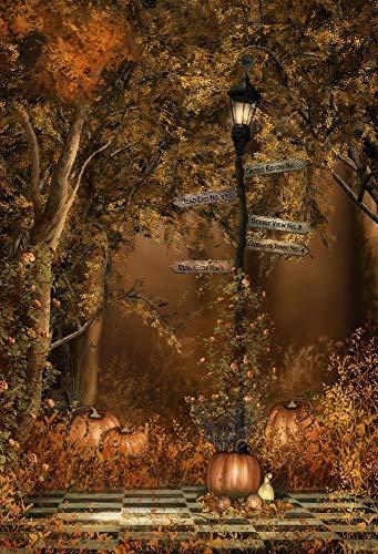 GzHQ 5x7FT Fotografie Hintergrund Düster Wald Nacht Bäume Straßenschild Lampe Kürbisse Halloween Kinder Party Erwachsene Hintergrund 1,5 (B) x 2,2 (H) m Hintergrund Video Foto Studio Requisiten
