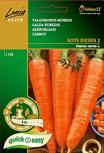 seklos-lt-carrot-rote-riesen-2-seeds-on-4m-tape