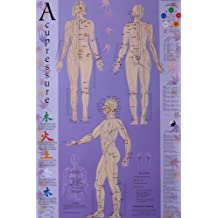 Acupressure Chart - Points & Meridians by Michael Reed Gach (2005-11-10)