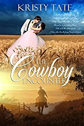 The Cowboy Encounter: a time-travel romance (Witching Well Book 2) (English Edition)