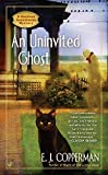 AN Uninvited Ghost (A Haunted Guesthouse Mystery, Band 2)