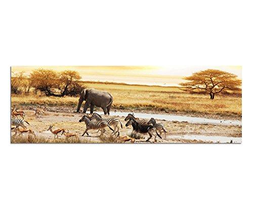 Panoramabild auf Leinwand und Keilrahmen 150x50cm Afrika Safari Zebras Elefant Landschaft