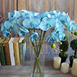 FENGLANG Kunstpflanze Orchidee Weiß Phalaenopsis Purple 3PCS (Blau)