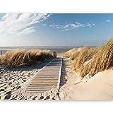 murando - Fototapete 450x270 cm - Vlies Tapete - Moderne Wanddeko - Design Tapete - Wandtapete - Wand Dekoration - Strand Sand Wasser Natur Himmel Sommerferien Düne Sommer Wolken Blau Nordsee - 100603-26