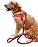 PLHF Hund skaliert Leine Brust Harness Hund Geschirre Hund Seil nicht, xs, red and black