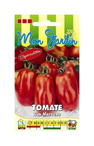 Les Graines Bocquet - Graines De Tomate San Marzano 2 - Graines Potagères À Semer - Sachet De 0.5Grammes