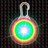 Hunde Leuchtanhänger Leuchthalsband Led Hundehalsband LH6 Blinkie von Leuchthund® Led Anhänger (disko 1 (Farbwechselspiel))
