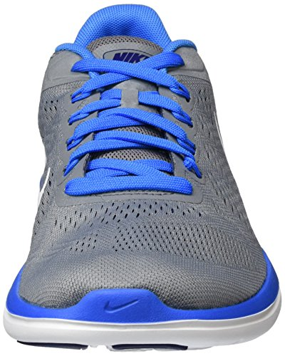 Nike Flex Rn, Scarpe da Corsa Uomo Grigio (Cool Grey/White-Lyl Bl-Pht Bl)