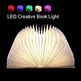 Flying Rabbit Faltbare Buch-Licht LED-Stimmungsbeleuchtung, Magicfly USB Wieder Aufladbares Buch Lampe, Magnetisches Design - Kreatives Geschenk Zum Valentinstag (1 pcs)