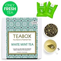 Teabox White Mint Tea, 16 Tea Bags | with Peppermint and Spearmint (2 Free Exotic Samples Included)