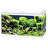 Ciano - Aquarium 60 LED - Blanc