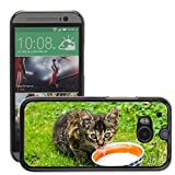 hello-mobile Bild Hart Handy Schwarz Schutz Case Cover Schale Etui // M00135846 Cat Pet Kitten Animal Fur Tomcat // HTC One M8