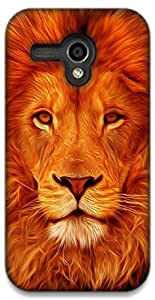 The Racoon Lean Face of the Lion hard plastic printed back case / cover for Moto G (1st Gen)