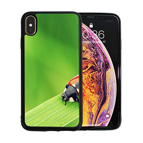 WOCNEMP Adybug On Grass Macro Close Up Apple-Telefon Xs Max Fall-Schutzfolie TPU Hard Cover mit dünnem stoßfestem Stoßfänger Schutzhülle für Apple Apple-Telefon Xs Max 6,5 Zoll -