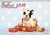Bullys - Französische Bulldoggen 2017 (Wandkalender 2017 DIN A4 quer): Kleine Hunde mit großem Herz (Monatskalender, 14 Seiten) (CALVENDO Tiere)