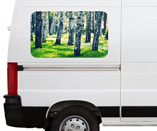Autoaufkleber Birke Wald Birkenwald Baum Landschaft Stamm Car Wohnmobil Auto tuning Digital Druck Fenster Sticker LKW Bild Aufkleber 21B147, Größe 3D sticker:ca. 120cmx73cm (Birke Landschaft Fenster)