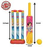 Halo Nation Kids Cricket Set with Bat,Balls, Wickets,Bells- Indoor Beach Outdoor Garden Play Set for 2-6 Yrs Kids (Princess, 18 inch)