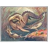 Dinosaurios Póster Impresión Artística con Marco (Plástico) - Mosasaurio Y Ictiosaurios, Heinrich Harder, 1912 (80 x 60cm)