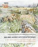 300.000 Jahre Spitzentechnik: Der altsteinzeitliche Fundplatz Schöningen und die frühesten Speere der Menschheit (Edition AiD) -