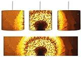 Pusteblume im Abendlicht Pinsel Effekt inkl. Lampenfassung E27, Lampe mit Motivdruck, tolle Deckenlampe, Hängelampe, Pendelleuchte - Durchmesser 30cm - Dekoration mit Licht ideal für Wohnzimmer, Kinderzimmer, Schlafzimmer