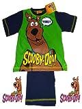 Boys Scooby Doo Short Pyjamas 2-3 Years