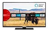 JVC LT-49V55LFA 124 cm (49 Zoll) Fernseher (Full HD, Triple-Tuner, Smart TV, Prime Video, Bluetooth)