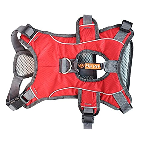 BLACKDOGGY Professional Dog Harness Adjustable Pet Body Harness Vest Visible at Night Outdoor Training Harnesses Premium Quality Chest Straps No-Pull Effect