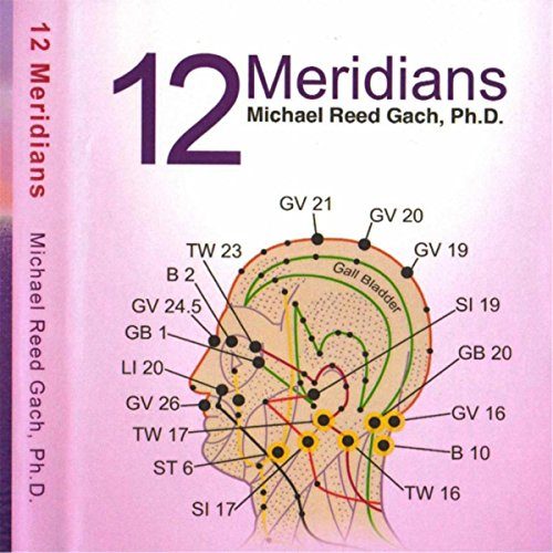 12-meridians-guided-visualizations-acu-yoga-2-instructional-cds