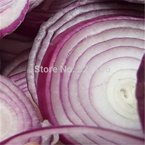 Erbe Natürliche (Das natürliche Erbe der organischen Nudeln Squash Samen von Gemüsesaatgut Paket der Originalverpackung Teigwaren / 12)