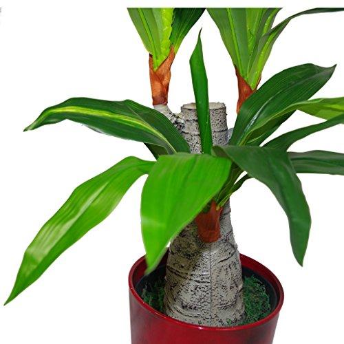Blatt-Entwurf UK 75cm Künstliche Dracaena Pflanze – Breite Trunk Triple-Zweig Large – Topf in Schwarzem Kunststoff-Topf