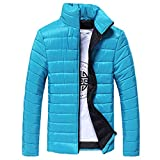 TIFIY Herren Winterjacke Steppjacke Sweatjacke Draussen Wärmejacke Jackenständer Zipper Warm Gesteppt Outwear Mantel M-4XL