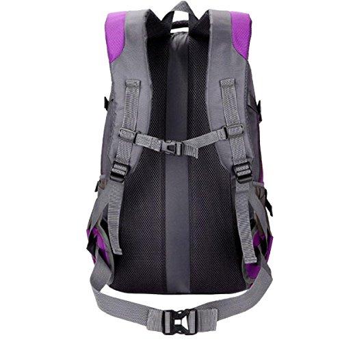 Yy.f Outdoor-Kletter Tasche Rucksack Männliche Und Weibliche Schultern Fuß Atmungsaktiv Leicht Wasserdicht Reiten Tasche Rucksack Eine Große Kapazität. Multicolor Purple