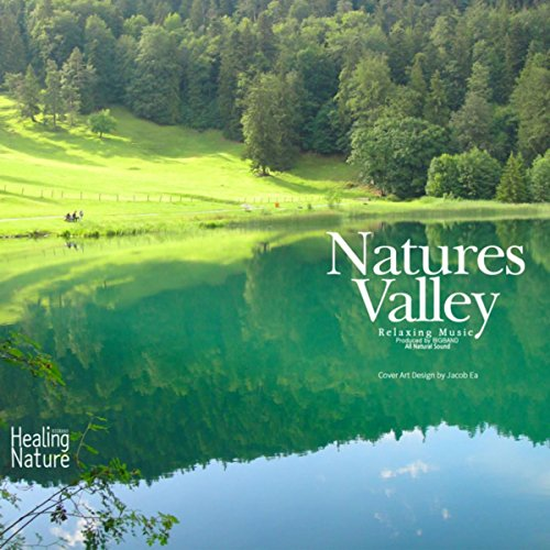 nature-sounds-from-pure-valley-8