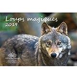 Loup magique · 29,7 cm x 21,0 cm · calendrier 2019 · Loup · Loup · Loups · Forêt · Nature · Animal · Faune · Edition âme magique