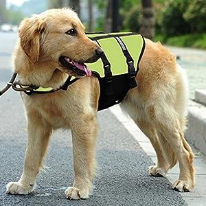 Tutoy Chien Pet Float Life Jacket Life Vest Aquatic Safety Combinaison De Bain Vêtement De Vie Nautique